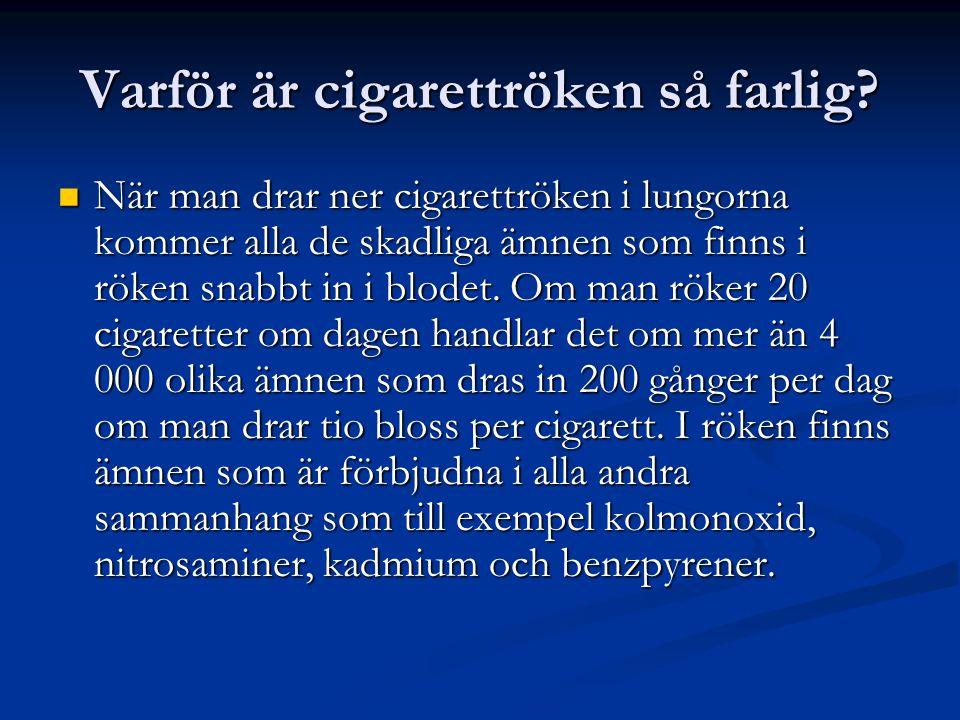 Varför är cigarettröken så farlig?  När man drar ner cigarettröken i lungorna kommer alla de skadliga ämnen som finns i röken snabbt in i blodet. Om