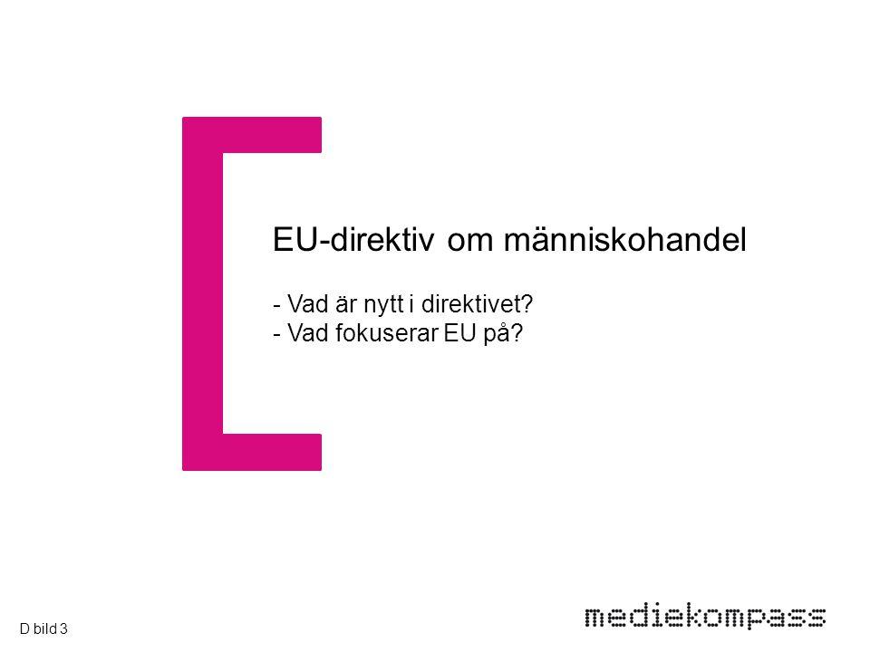 EU-direktiv om människohandel - Vad är nytt i direktivet - Vad fokuserar EU på D bild 3