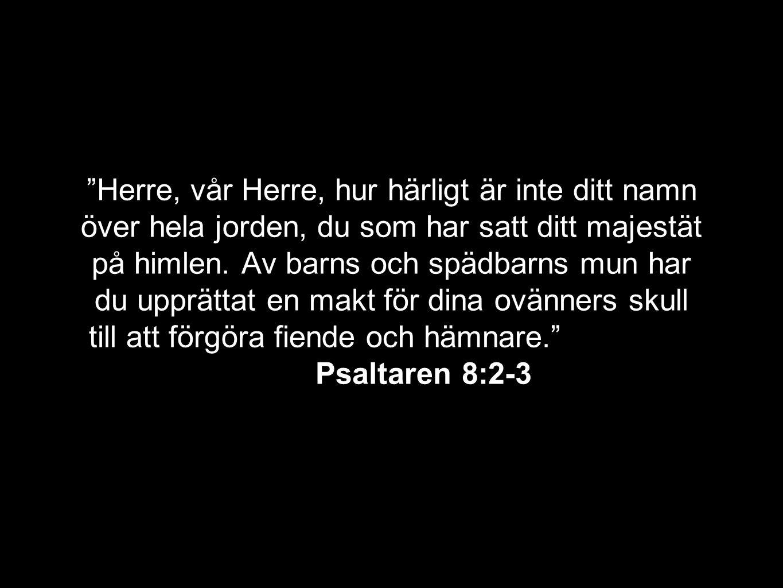 """""""Herre, vår Herre, hur härligt är inte ditt namn över hela jorden, du som har satt ditt majestät på himlen. Av barns och spädbarns mun har du upprätta"""