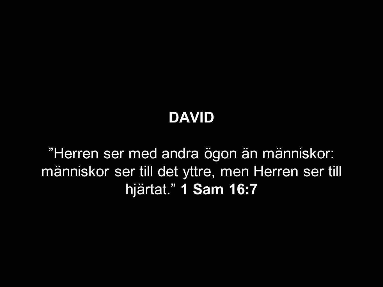 """DAVID """"Herren ser med andra ögon än människor: människor ser till det yttre, men Herren ser till hjärtat."""" 1 Sam 16:7"""
