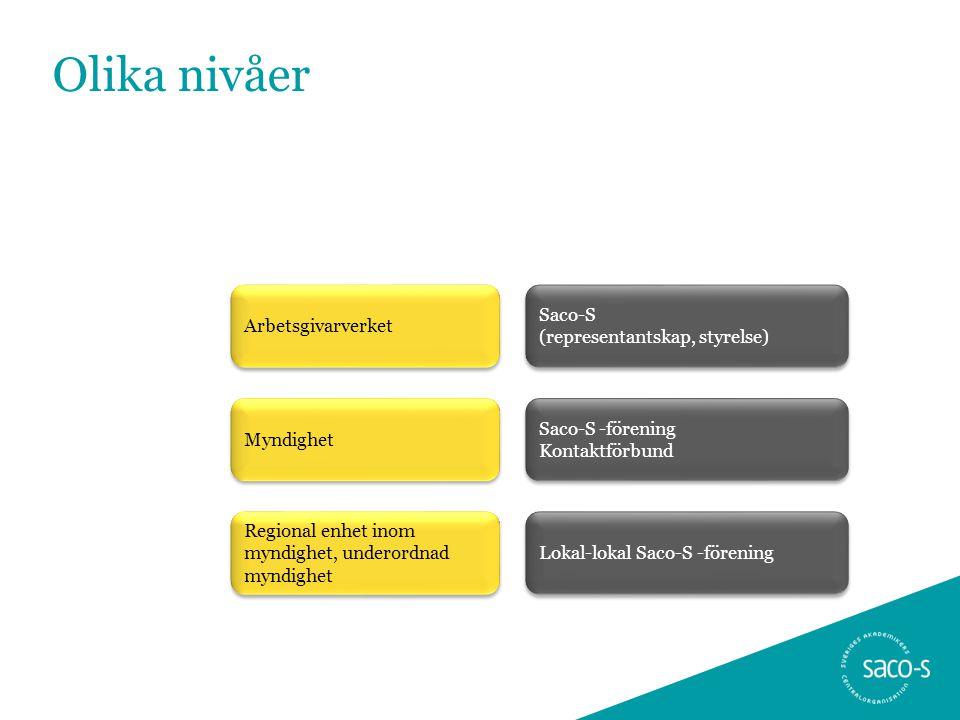 Olika nivåer Arbetsgivarverket Myndighet Regional enhet inom myndighet, underordnad myndighet Saco-S (representantskap, styrelse) Saco-S -förening Kon