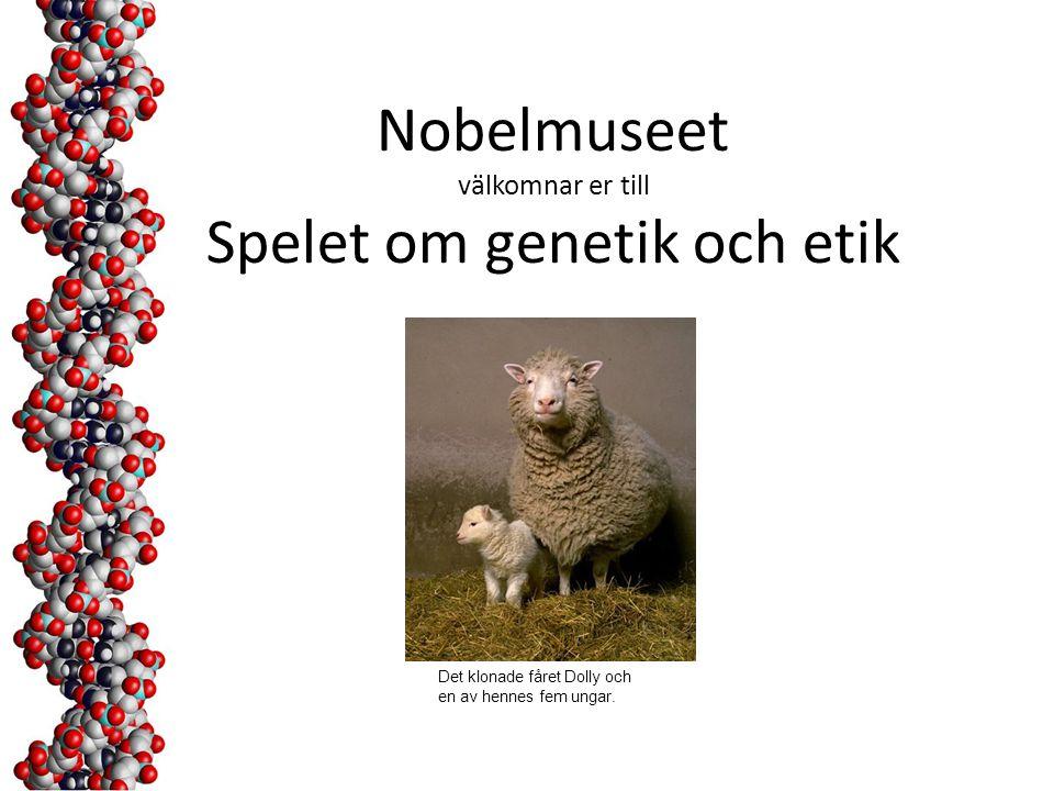 Nobelmuseet välkomnar er till Spelet om genetik och etik Det klonade fåret Dolly och en av hennes fem ungar.