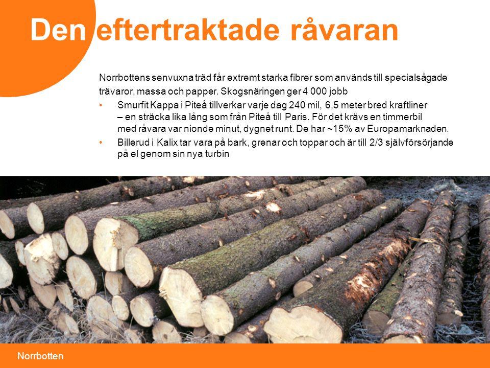 Norrbotten Den eftertraktade råvaran Norrbottens senvuxna träd får extremt starka fibrer som används till specialsågade trävaror, massa och papper.
