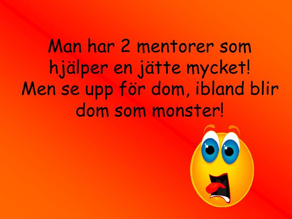 Man har 2 mentorer som hjälper en jätte mycket! Men se upp för dom, ibland blir dom som monster!