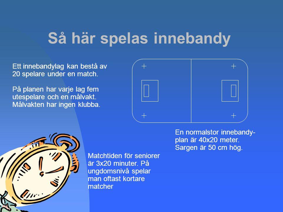 2009-03-12 Innebandyn är unik som idrott i Sverige genom att ha en gemensam grafisk profil
