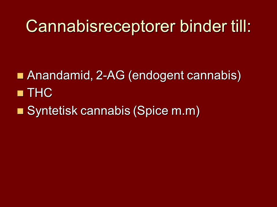 Cannabisreceptorer binder till:  Anandamid, 2-AG (endogent cannabis)  THC  Syntetisk cannabis (Spice m.m)