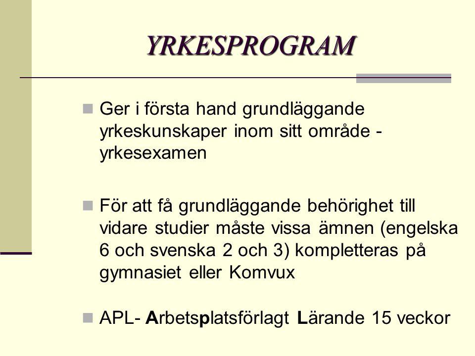 YRKESPROGRAM  Ger i första hand grundläggande yrkeskunskaper inom sitt område - yrkesexamen  För att få grundläggande behörighet till vidare studier måste vissa ämnen (engelska 6 och svenska 2 och 3) kompletteras på gymnasiet eller Komvux  APL- Arbetsplatsförlagt Lärande 15 veckor