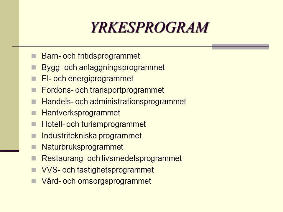 YRKESPROGRAM  Barn- och fritidsprogrammet  Bygg- och anläggningsprogrammet  El- och energiprogrammet  Fordons- och transportprogrammet  Handels- och administrationsprogrammet  Hantverksprogrammet  Hotell- och turismprogrammet  Industritekniska programmet  Naturbruksprogrammet  Restaurang- och livsmedelsprogrammet  VVS- och fastighetsprogrammet  Vård- och omsorgsprogrammet