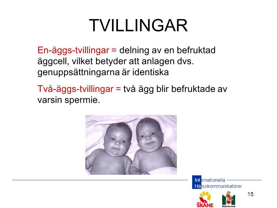 Internationella Hälsokommunikatörer 15 TVILLINGAR En-äggs-tvillingar = delning av en befruktad äggcell, vilket betyder att anlagen dvs. genuppsättning