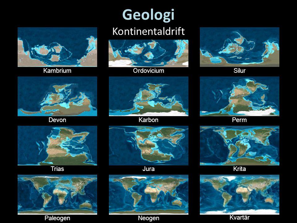 KambriumOrdoviciumSilur DevonKarbonPerm TriasJuraKrita PaleogenNeogen Kvartär Geologi Kontinentaldrift