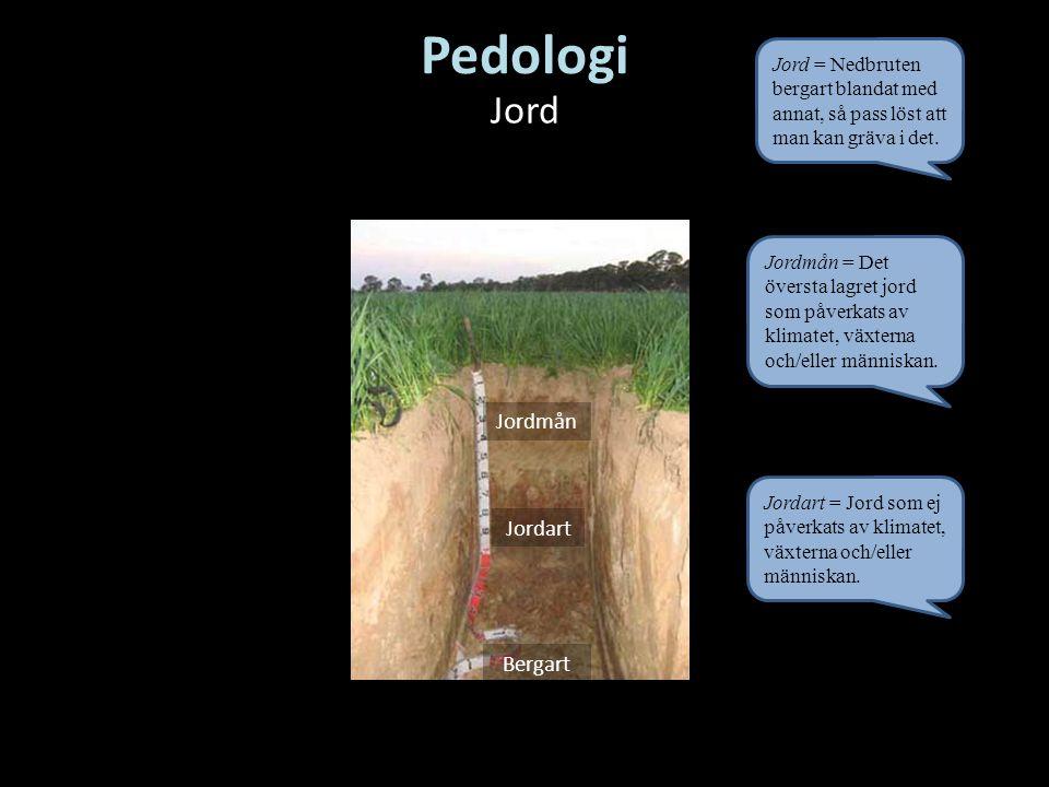 Pedologi Jord Jordmån Jordart Bergart Jordmån = Det översta lagret jord som påverkats av klimatet, växterna och/eller människan. Jordart = Jord som ej