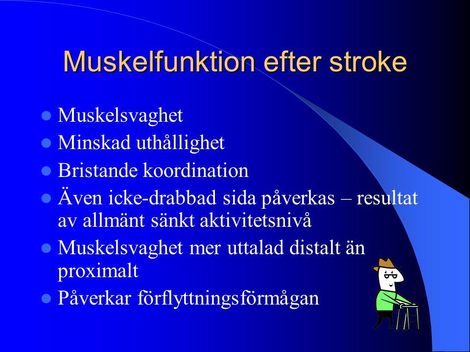 Muskelfunktion efter stroke  Muskelsvaghet  Minskad uthållighet  Bristande koordination  Även icke-drabbad sida påverkas – resultat av allmänt sän
