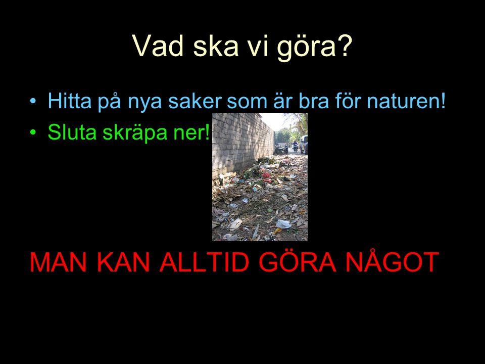 Vad ska vi göra? •Hitta på nya saker som är bra för naturen! •Sluta skräpa ner! MAN KAN ALLTID GÖRA NÅGOT