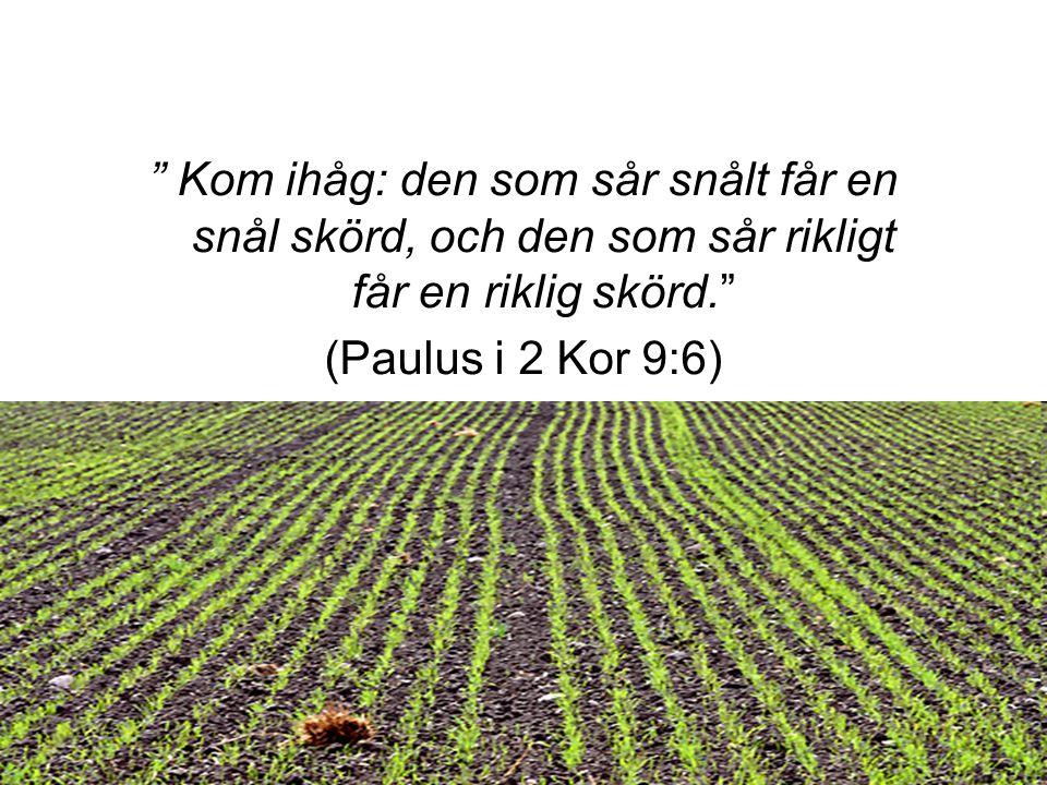 """ Kom ihåg: den som sår snålt får en snål skörd, och den som sår rikligt får en riklig skörd."" (Paulus i 2 Kor 9:6)"