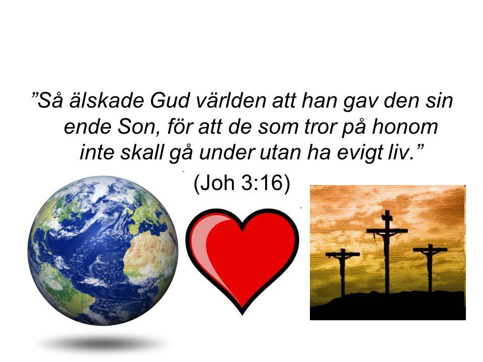 """""""Så älskade Gud världen att han gav den sin ende Son, för att de som tror på honom inte skall gå under utan ha evigt liv."""" (Joh 3:16)"""