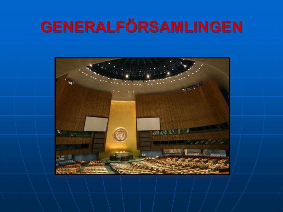 MR Frågor om de mänskliga rättigheterna  Frågan om yttrandefrihet och förtal av religioner  Frågan om internationella företags roll i främjandet av MR  Frågan om romers situation i Europa
