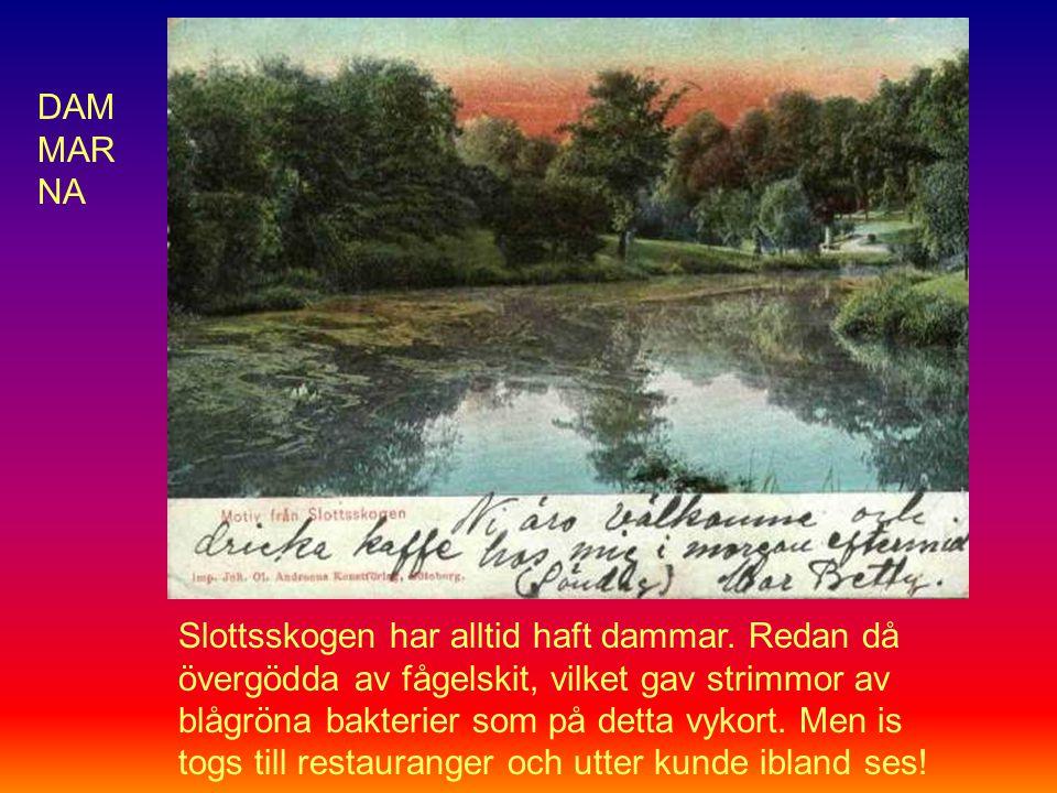 Slottsskogen har alltid haft dammar.