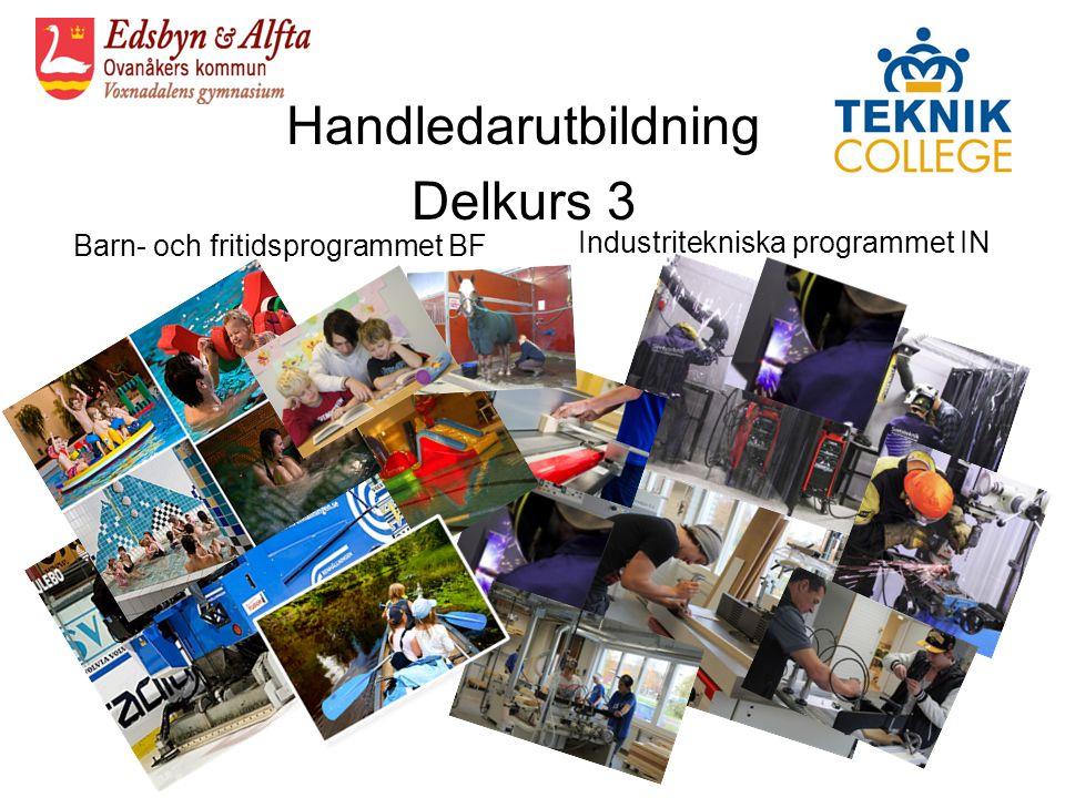 Handledarutbildning Delkurs 3 Barn- och fritidsprogrammet BF Industritekniska programmet IN