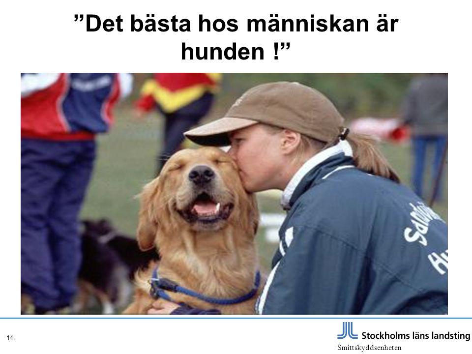 """Smittskyddsenheten 14 """"Det bästa hos människan är hunden !"""""""