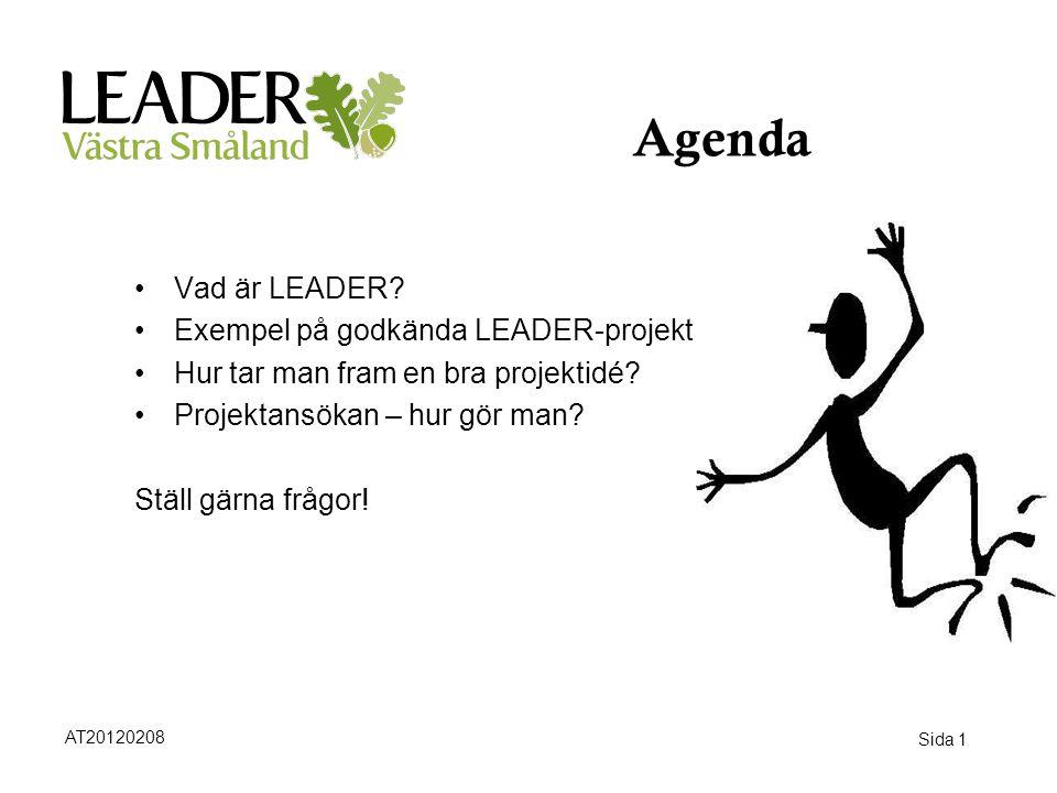 Sida 1 Agenda •Vad är LEADER? •Exempel på godkända LEADER-projekt •Hur tar man fram en bra projektidé? •Projektansökan – hur gör man? Ställ gärna fråg