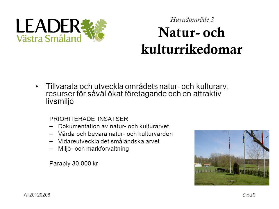 Sida 9 Huvudområde 3 Natur- och kulturrikedomar •Tillvarata och utveckla områdets natur- och kulturarv, resurser för såväl ökat företagande och en att