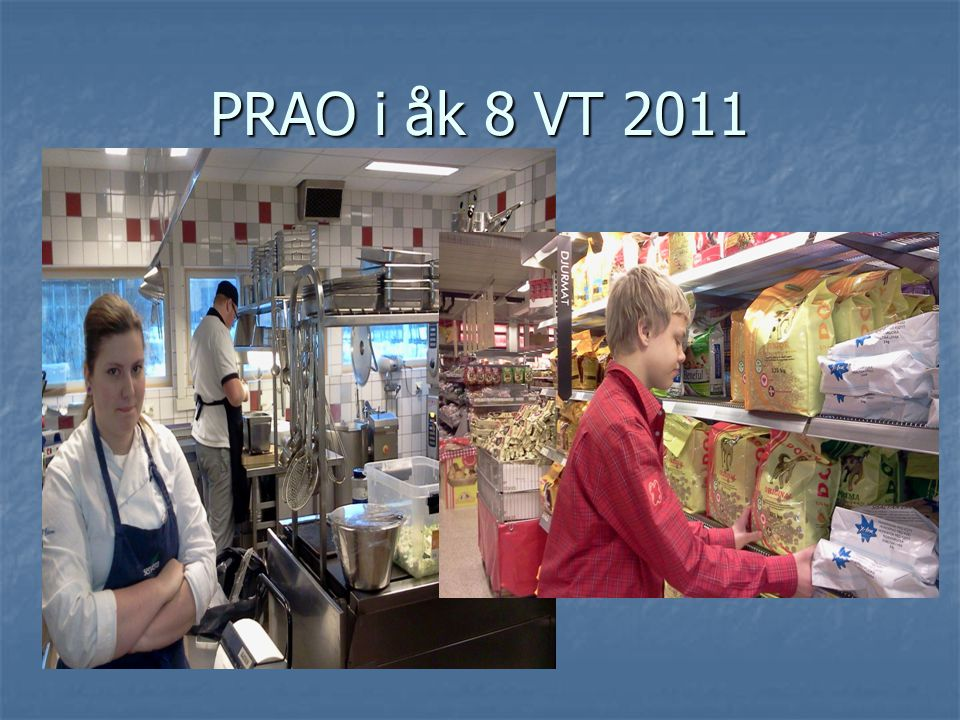 Vad innebär det att arbeta som planarkitekt? Lantmätare? http://www.yrmis.se/sv/