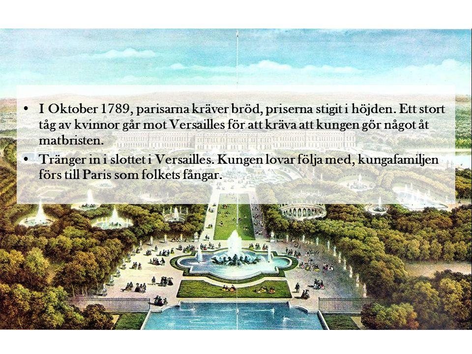 •Svensken Axel von Fersen fick uppdraget att hjälpa kungafamiljen fly.