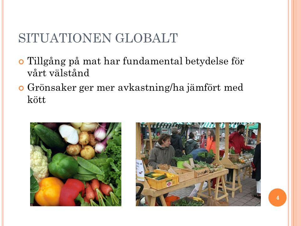 SITUATIONEN GLOBALT Tillgång på mat har fundamental betydelse för vårt välstånd Grönsaker ger mer avkastning/ha jämfört med kött 4
