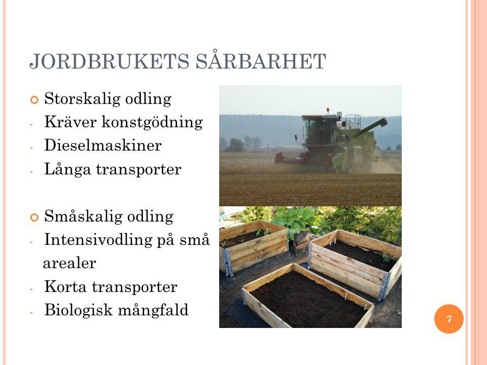 JORDBRUKETS SÅRBARHET Storskalig odling - Kräver konstgödning - Dieselmaskiner - Långa transporter Småskalig odling - Intensivodling på små arealer - Korta transporter - Biologisk mångfald 7