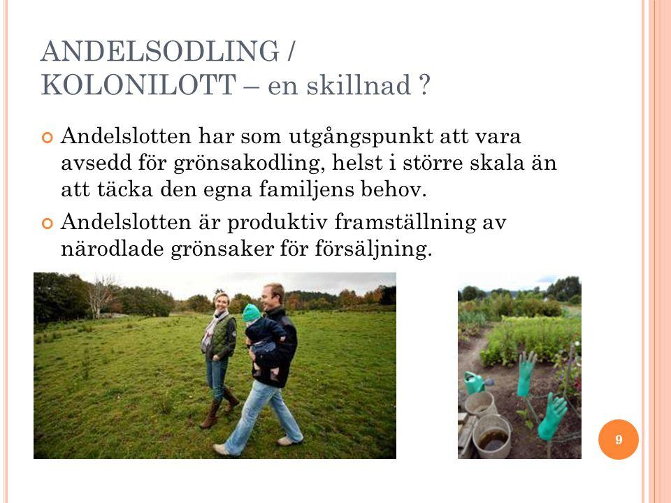ANDELSODLING / KOLONILOTT – en skillnad .