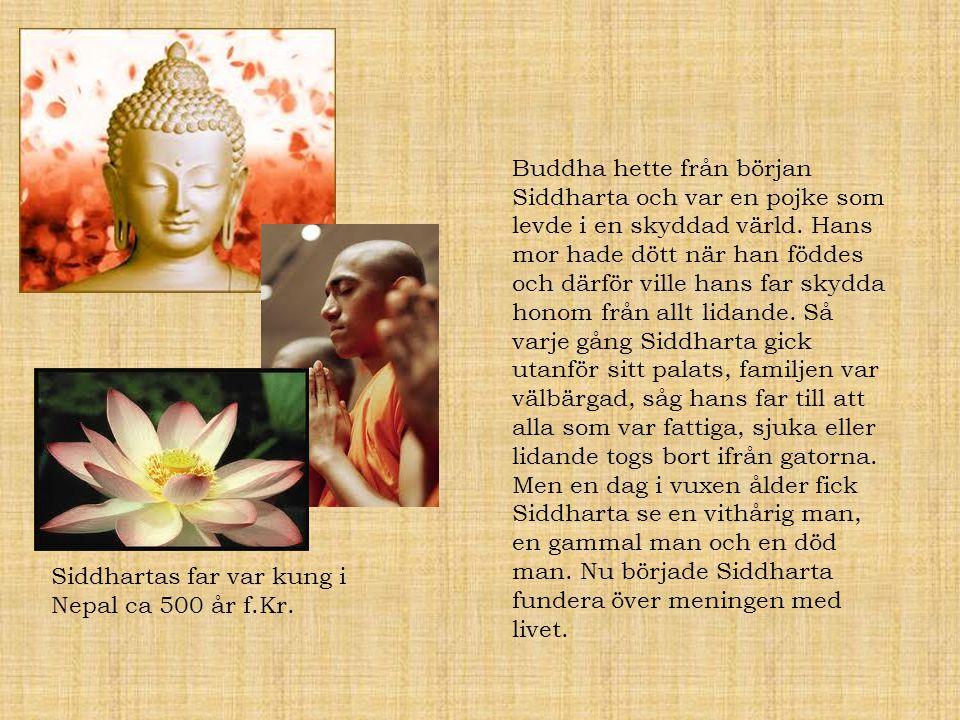 Buddha hette från början Siddharta och var en pojke som levde i en skyddad värld. Hans mor hade dött när han föddes och därför ville hans far skydda h