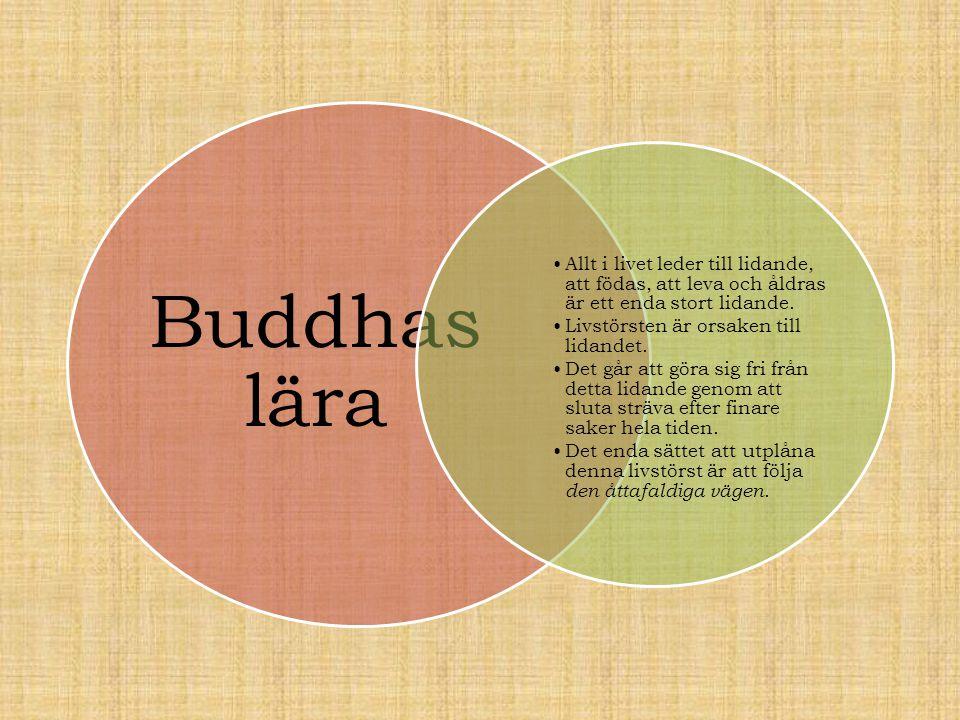 Buddhas lära •Allt i livet leder till lidande, att födas, att leva och åldras är ett enda stort lidande. •Livstörsten är orsaken till lidandet. •Det g