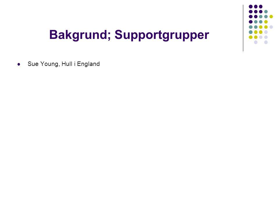 Tre olika roller  Den som leder supportgruppen  Den utsatta eleven  Supportgruppsmedlemmar