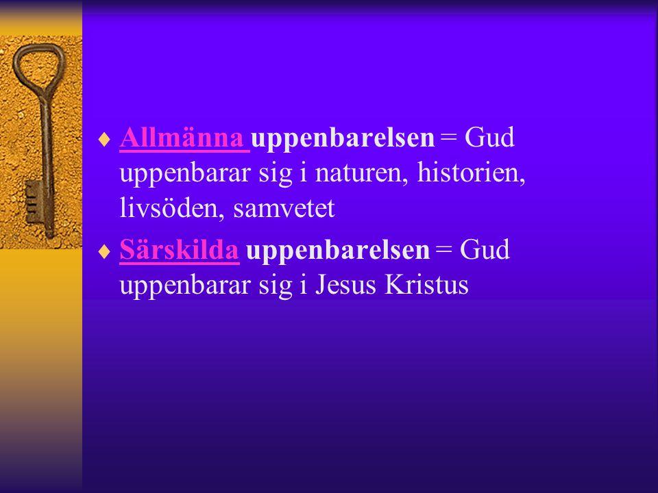  Allmänna uppenbarelsen = Gud uppenbarar sig i naturen, historien, livsöden, samvetet Allmänna  Särskilda uppenbarelsen = Gud uppenbarar sig i Jesus