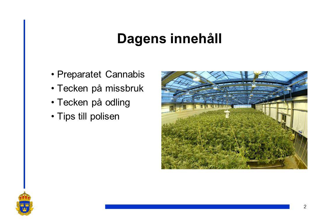 2 Dagens innehåll •Preparatet Cannabis •Tecken på missbruk •Tecken på odling •Tips till polisen