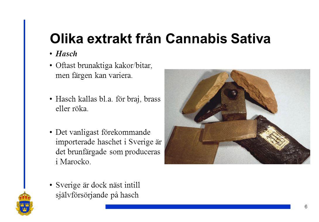 6 Olika extrakt från Cannabis Sativa •Hasch •Oftast brunaktiga kakor/bitar, men färgen kan variera. •Hasch kallas bl.a. för braj, brass eller röka. •D