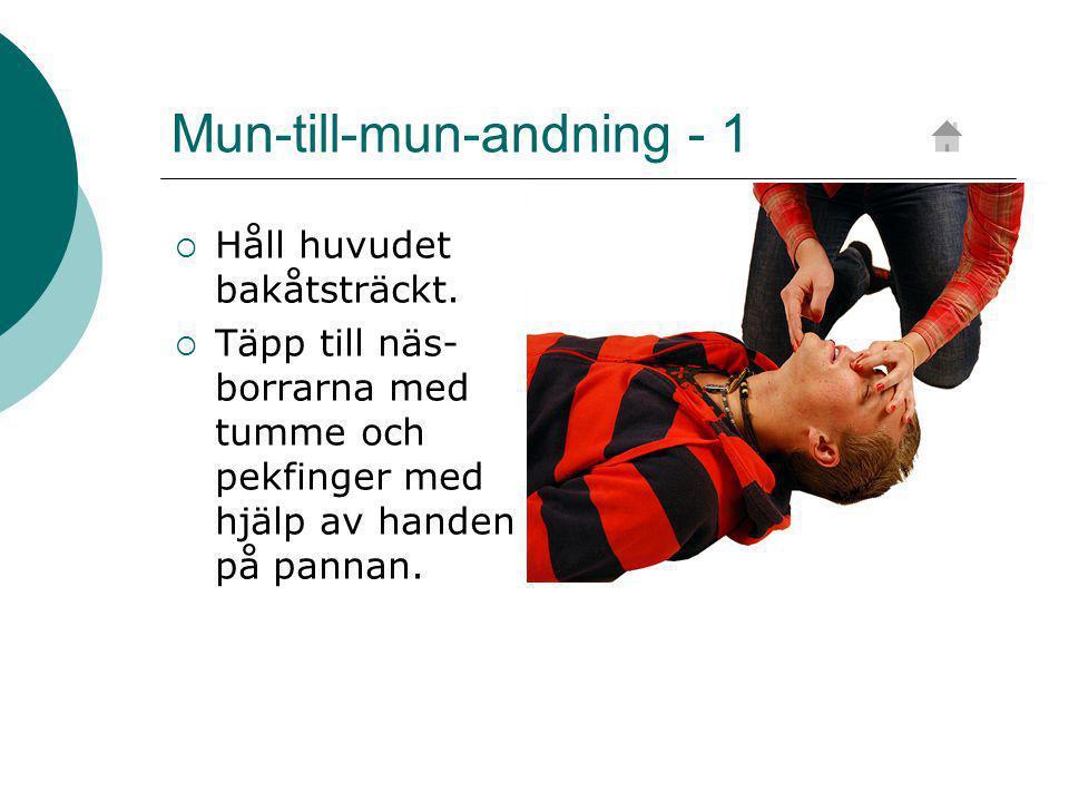 Mun-till-mun-andning - 1  Håll huvudet bakåtsträckt.
