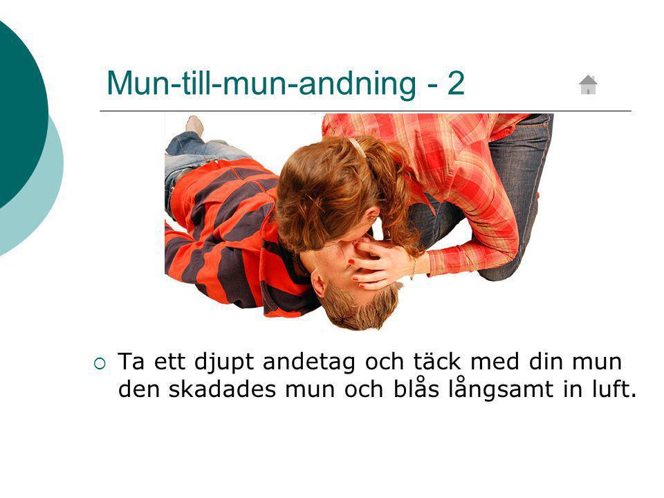 Mun-till-mun-andning - 2  Ta ett djupt andetag och täck med din mun den skadades mun och blås långsamt in luft.