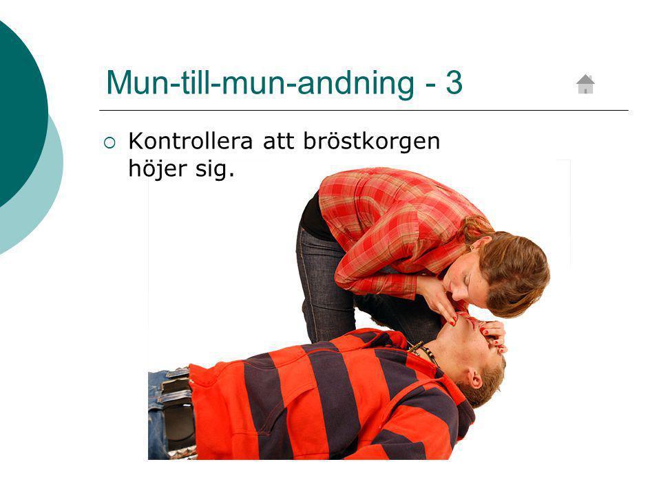 Mun-till-mun-andning - 3  Kontrollera att bröstkorgen höjer sig.