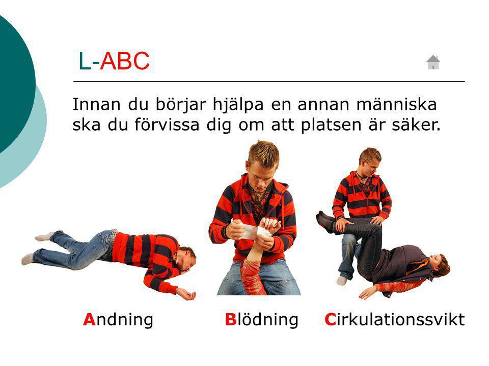L-ABC Andning BlödningCirkulationssvikt Innan du börjar hjälpa en annan människa ska du förvissa dig om att platsen är säker.