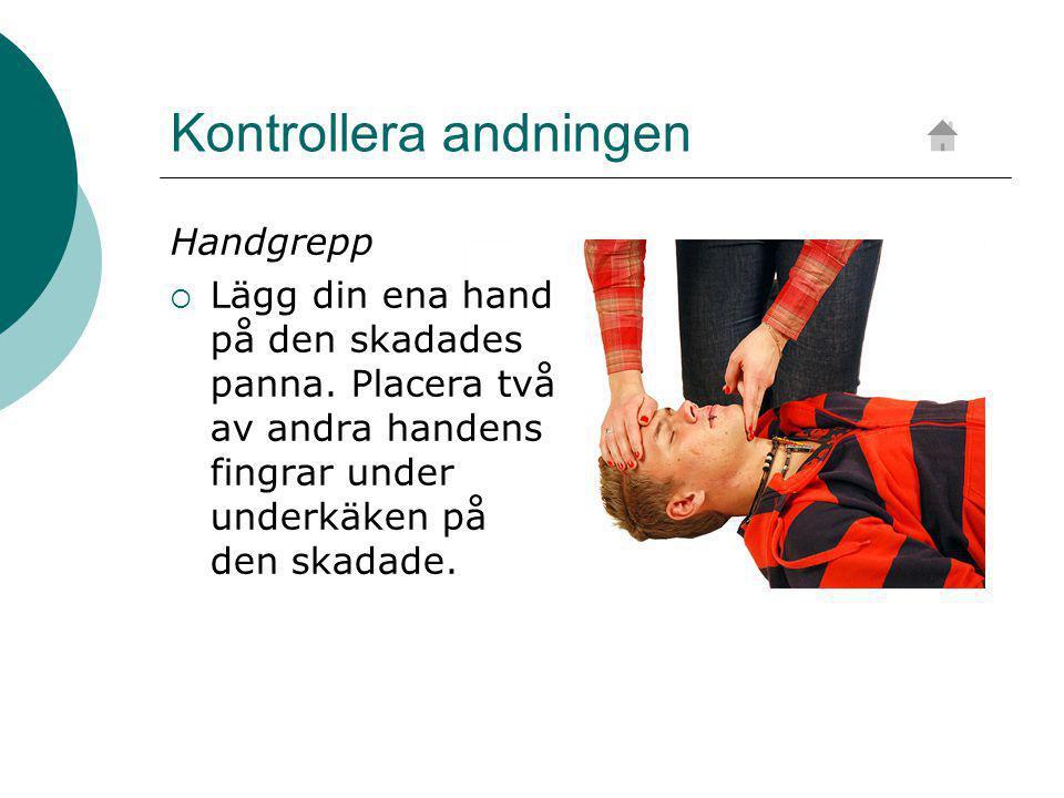 Kontrollera andningen Handgrepp  Lägg din ena hand på den skadades panna.