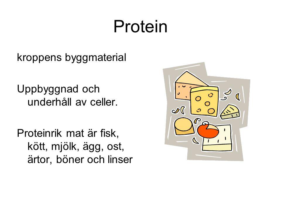 Protein kroppens byggmaterial Uppbyggnad och underhåll av celler. Proteinrik mat är fisk, kött, mjölk, ägg, ost, ärtor, böner och linser