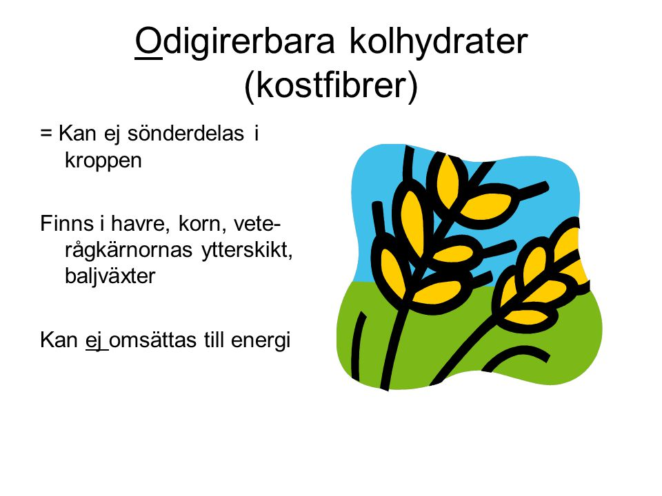 Odigirerbara kolhydrater (kostfibrer) = Kan ej sönderdelas i kroppen Finns i havre, korn, vete- rågkärnornas ytterskikt, baljväxter Kan ej omsättas ti