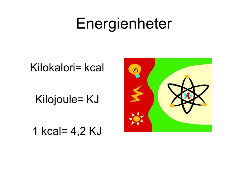 Hur kan jag räkna ut mitt energibehov.