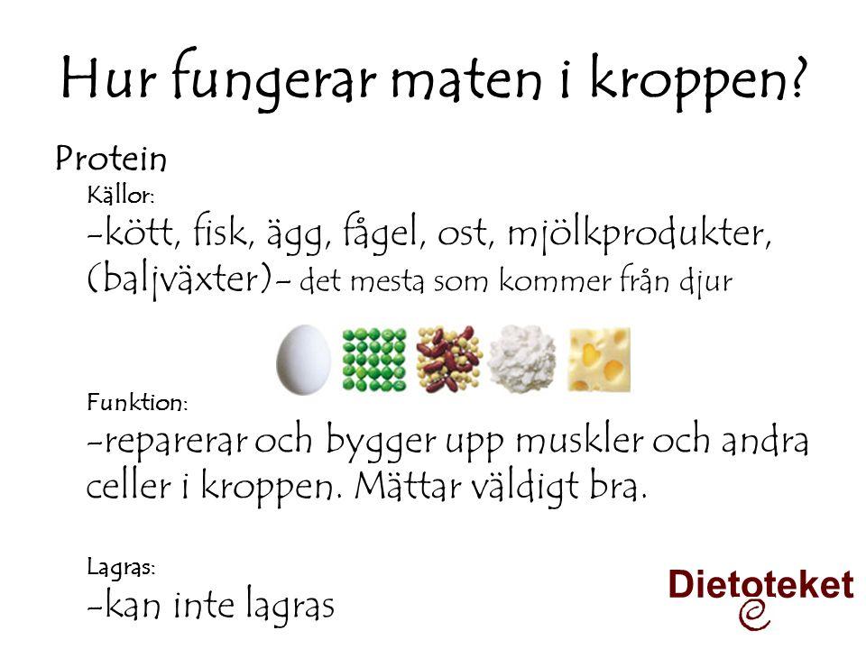 Hur fungerar maten i kroppen? Protein Källor: -kött, fisk, ägg, fågel, ost, mjölkprodukter, (baljväxter)- det mesta som kommer från djur Funktion: -re
