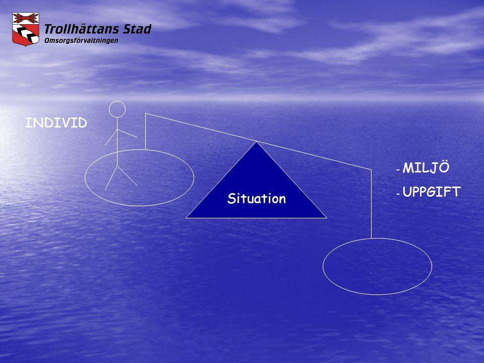 Situation - MILJÖ - UPPGIFT INDIVID