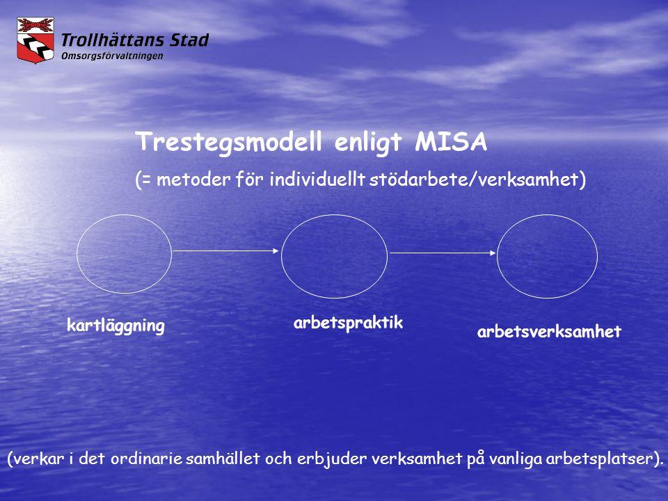 Trestegsmodell enligt MISA (= metoder för individuellt stödarbete/verksamhet) kartläggning arbetspraktik arbetsverksamhet (verkar i det ordinarie samh