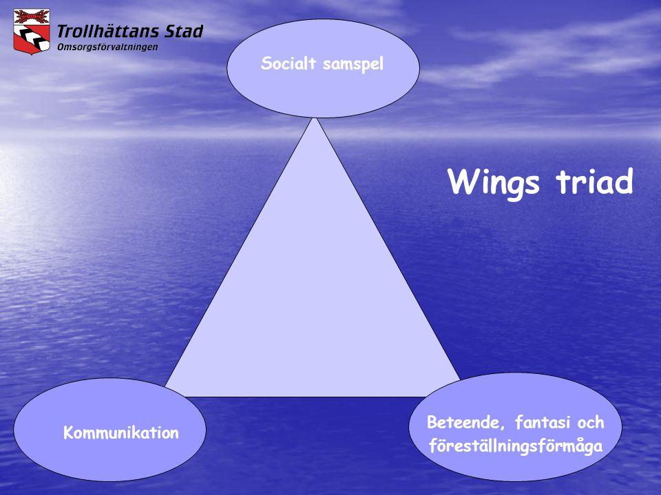 Kommunikation Socialt samspel Wings triad Beteende, fantasi och föreställningsförmåga
