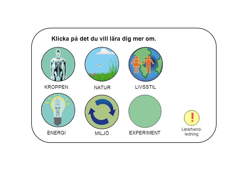 KLIMATFÖRÄNDRING Växthuseffekten Ozonlagret VAD ÄR MILJÖ.