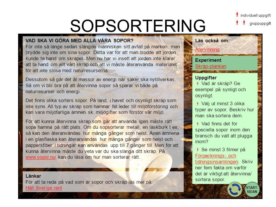 SOPSORTERING Uppgifter  Vad är skräp? Ge exempel på synligt och osynligt.  Välj ut minst 3 olika typer av sopor. Beskriv hur man ska sortera dem. 